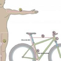 tu geometría ideal para la bici
